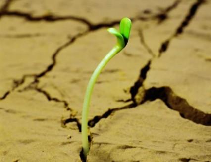 How the 12 Ascendants Start NEW BEGINNINGS In LIFE
